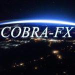 KING COBRA FX【FX投資】月利15% 安定感抜群の優良FX案件